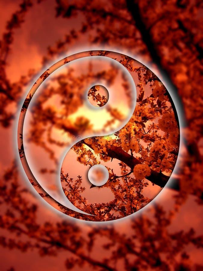 yang yin στοκ εικόνες