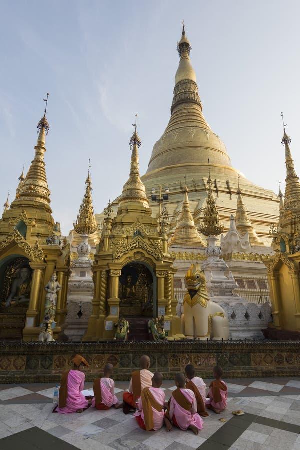 Yangon, Myanmar - 8 de maio de 2017: Grupo de freiras budistas que rezam ao pagode de Shwedagon, Yangon, Myan imagens de stock