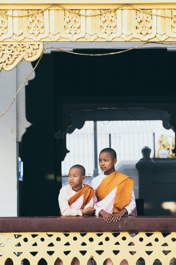 Yangon, Myanmar - em março de 2019: As monges fêmeas budistas do principiante estão no patamar no pagode de Shwedagon fotos de stock royalty free