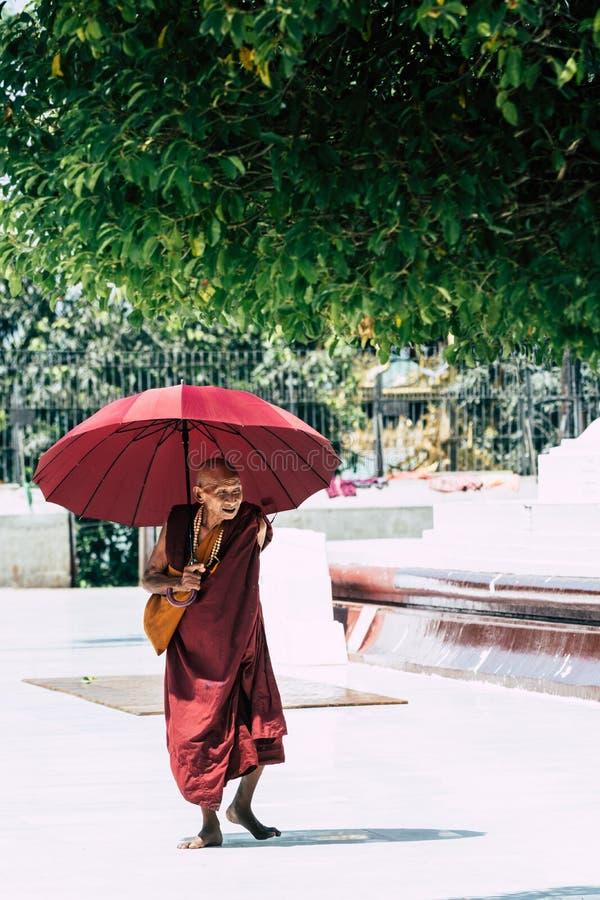 Yangon, Myanmar - mars 2019 : vieux moine bouddhiste avec les promenades rouges de parapluie dans la pagoda de Shwedagon photo stock