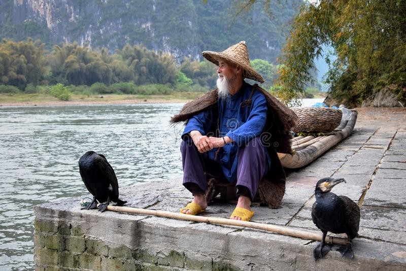 YANGSHUO, CHINA – CIRCA APRIL 2017: The man with the straw hat and two cormorants sit on the bank of the river. stock photography