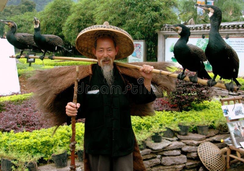 Yangshuo, China: Man with Commorants royalty free stock photos