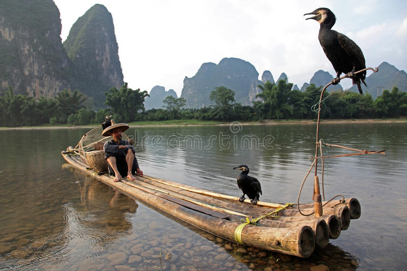 YANGSHUO - JUNE 18: Chinese man fishing with cormorants birds stock photo