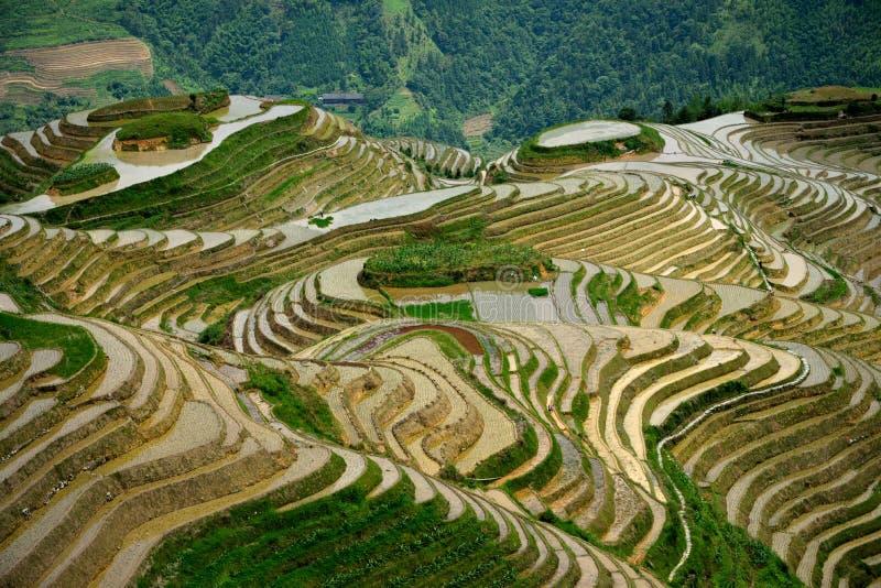 Yangshuo scenery royalty free stock photography