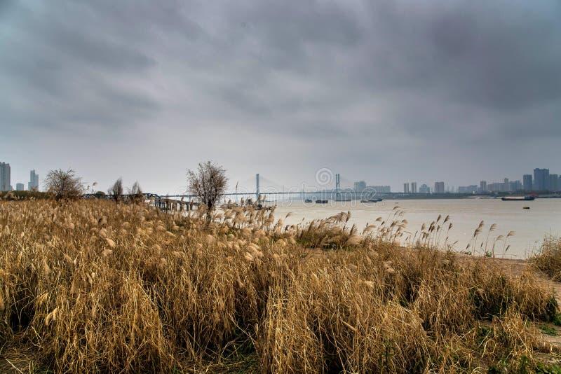 Yangtze river flows throungh wuhan city, china royalty free stock photos