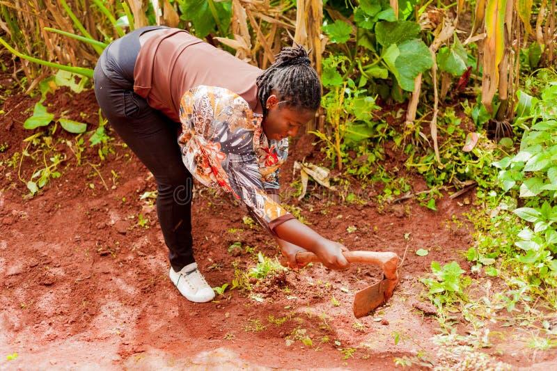 Yaounde Kamerun - 10 august 2018: ung sund och le afrikansk kvinna som gör hussysslor som är utomhus- med skyffeln i hemmet fotografering för bildbyråer
