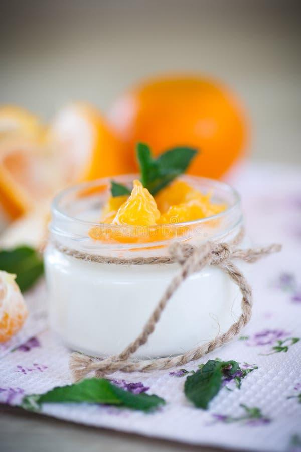 Yaourt avec des mandarines photographie stock
