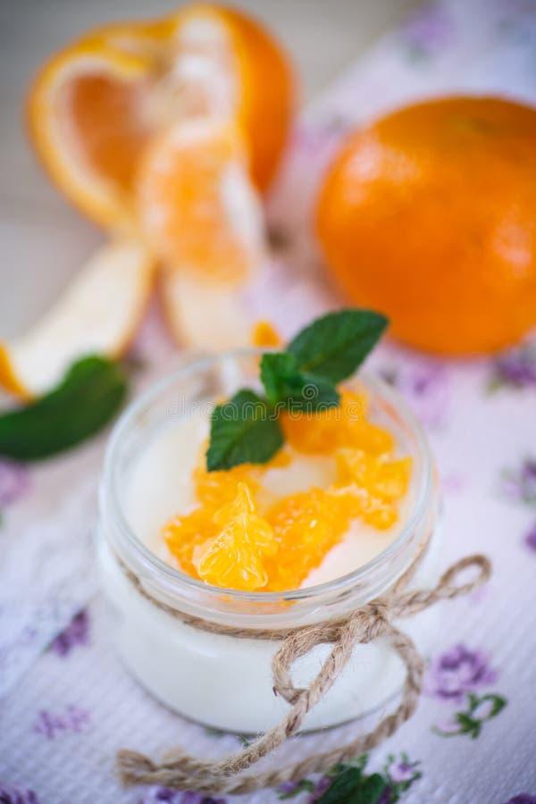 Yaourt avec des mandarines photo libre de droits
