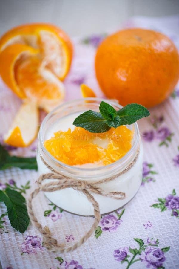 Yaourt avec des mandarines photo stock