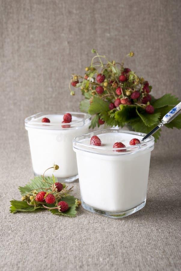 Yaourt avec les fraisiers communs image libre de droits