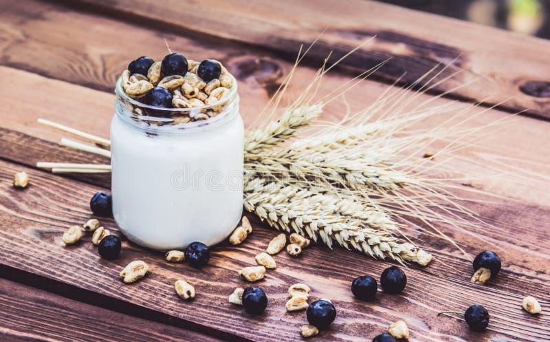 Yaourt fait maison avec des céréales et des baies Petit déjeuner utile photographie stock