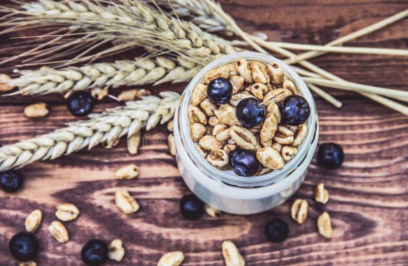 Yaourt fait maison avec des céréales et des baies Vue supérieure Dessert végétarien images libres de droits