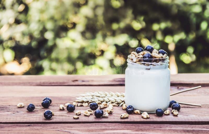 Yaourt fait maison de petit déjeuner utile avec des fruits et des céréales photo libre de droits