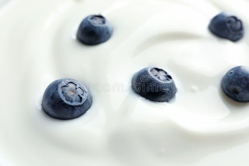 Yaourt frais savoureux avec des myrtilles photo libre de droits