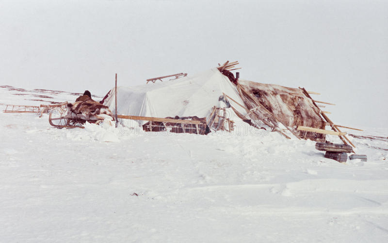 Yaranga - habitation de famille des indigènes de Chukchi dans la toundra images stock
