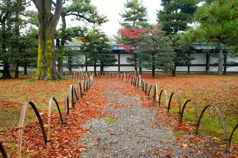 Download Yard stock photo. Image of foliage, fall, bonsai, leaf - 7089264