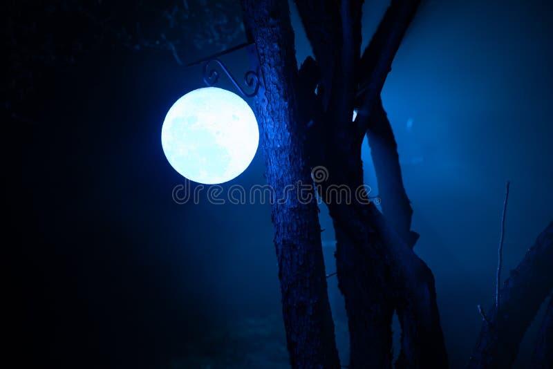 Yard brumeux de nuit avec la lumière lumineuse sur le fond lanterne accrochant sur l'arbre photos libres de droits