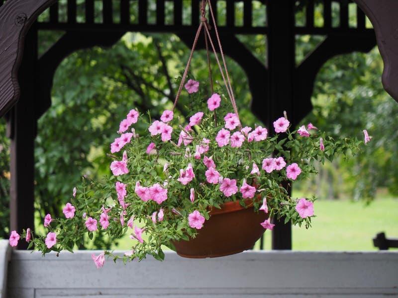 Yard and Garden Decorative Hanging Flower Pot stock image
