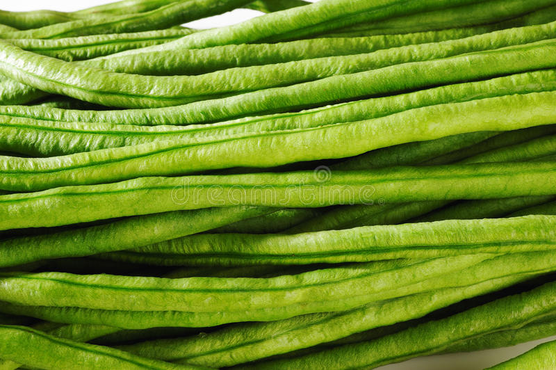 Yard long bean on white royalty free stock photo