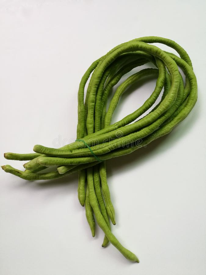 Yard long beans. Isolated on white background stock images