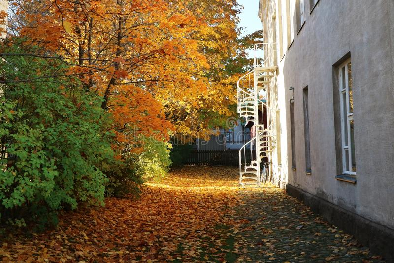 Yard pendant l'automne, entouré par le feuillage d'or images libres de droits