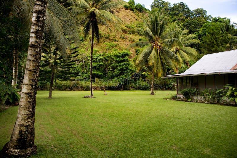 yard tropical arrière images stock