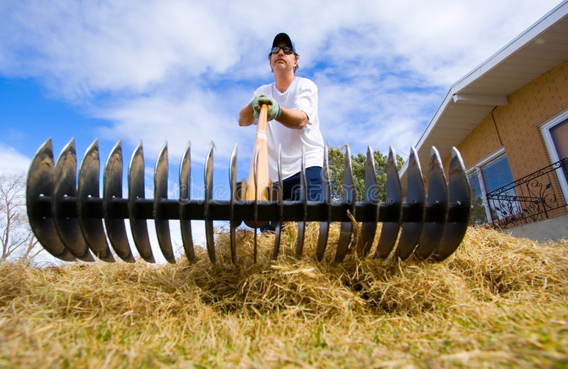 Download Yard work stock photo. Image of waste, outdoor, tool, recreational - 3748514