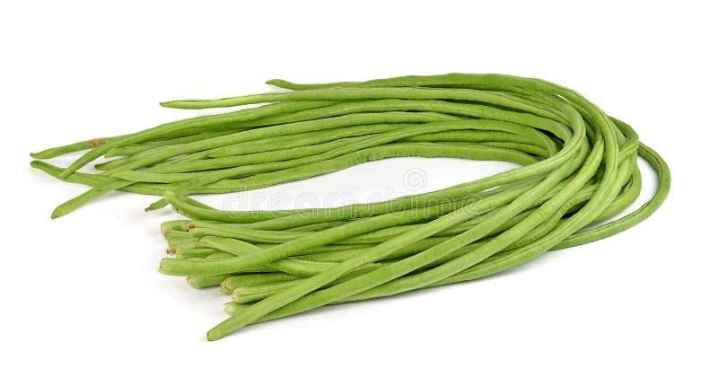 Yardlong bean isolated on white background. stock images