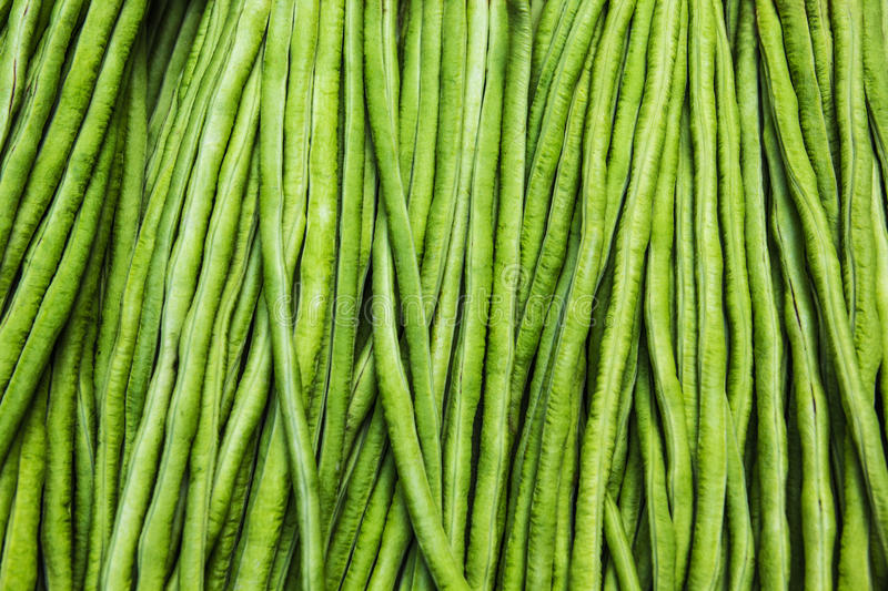 Yardlong bean. The Texture of yardlong bean in the market stock images