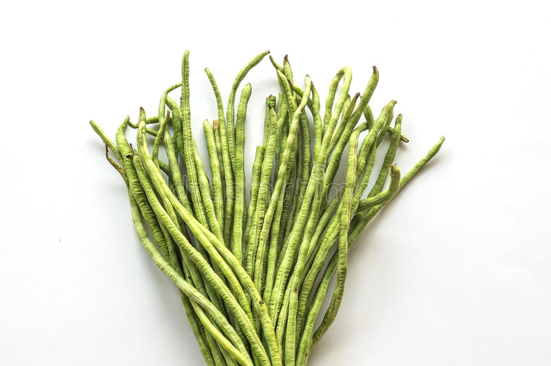 Yardlong bean. On white back ground stock image