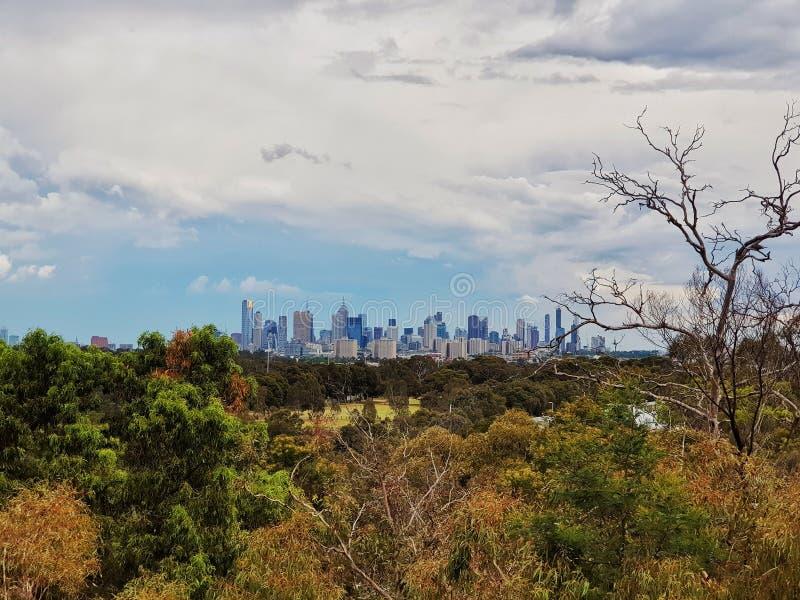 yarra взгляда горизонта реки Австралии разбивочное финансовохозяйственное melbourne стоковая фотография rf