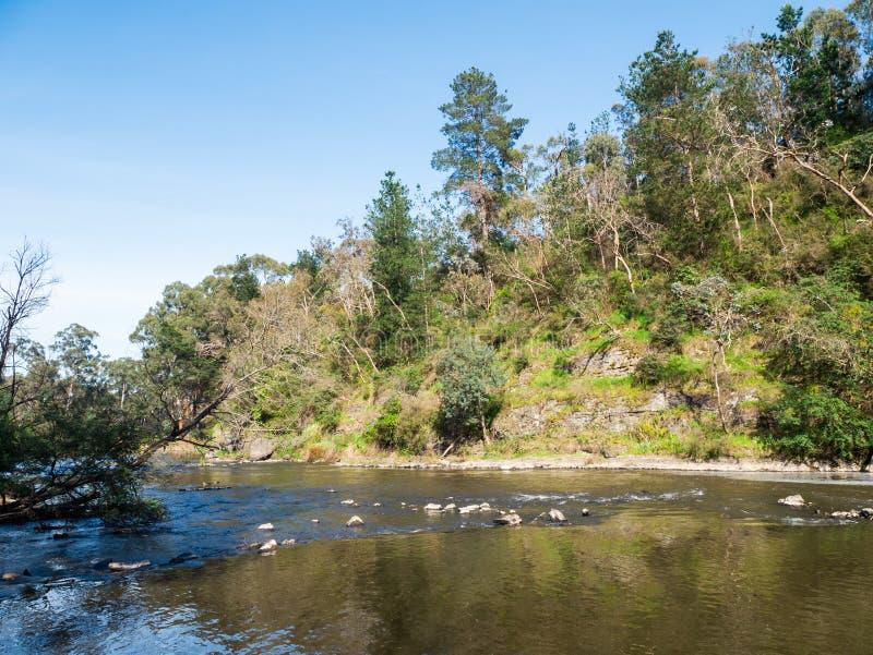 Yarrarivier die door de buitenvoorstad van Warrandyte in Australië vloeien stock fotografie