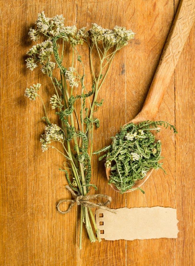 yarrow высушенные травы Фитотерапия, phytotherapy целебное она стоковые фотографии rf