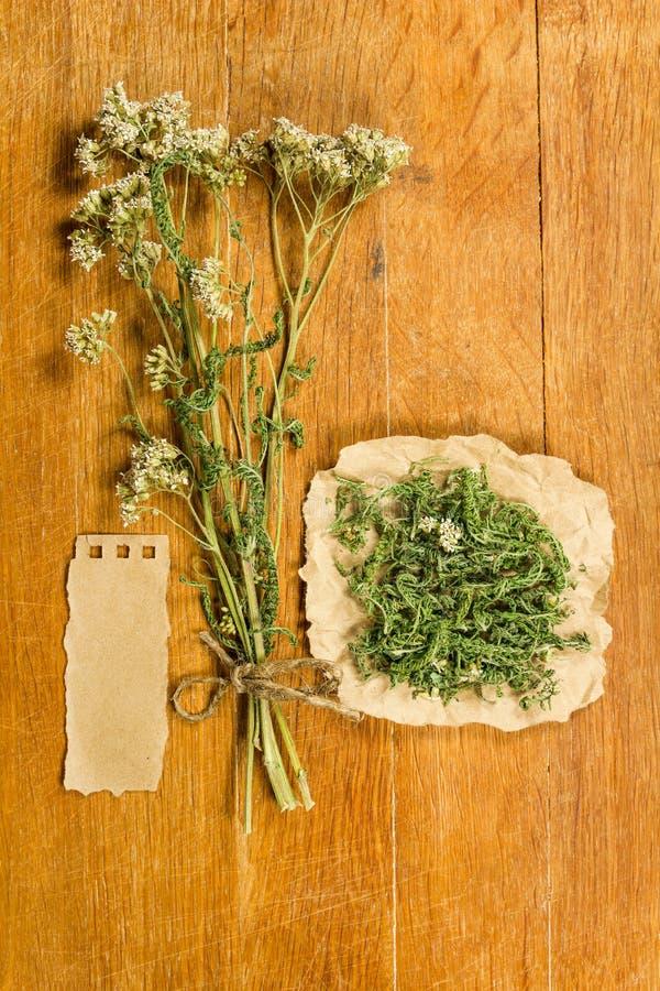 yarrow высушенные травы Фитотерапия, phytotherapy целебное она стоковое фото rf