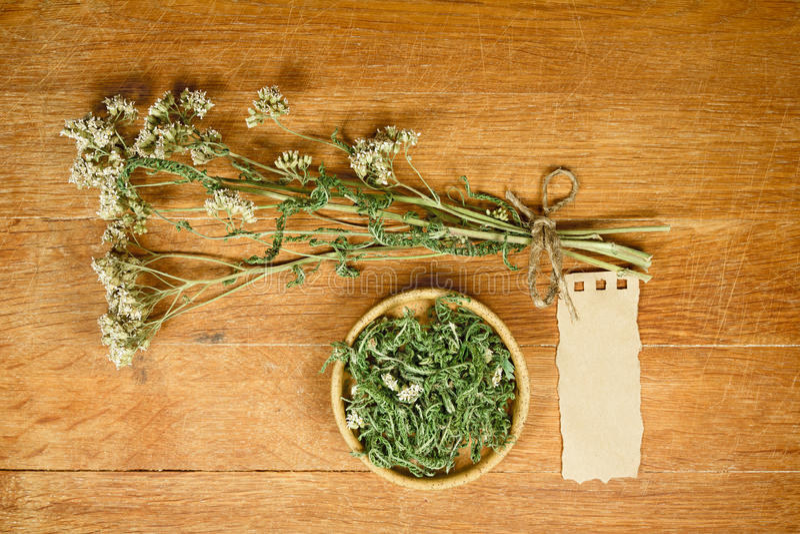 yarrow высушено Фитотерапия, phytotherapy целебные травы стоковое фото rf