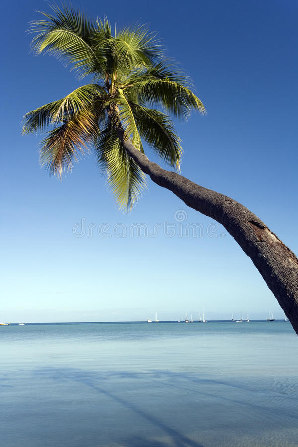 Yasawa Islands - Fiji - South Pacific royalty free stock photo
