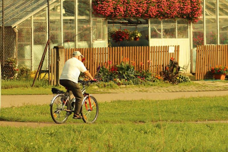 Yaslo, Polônia - 9 de julho de 2018: O homem está montando uma bicicleta em uma estrada entre verdes do verão nos raios do sol O  fotos de stock royalty free