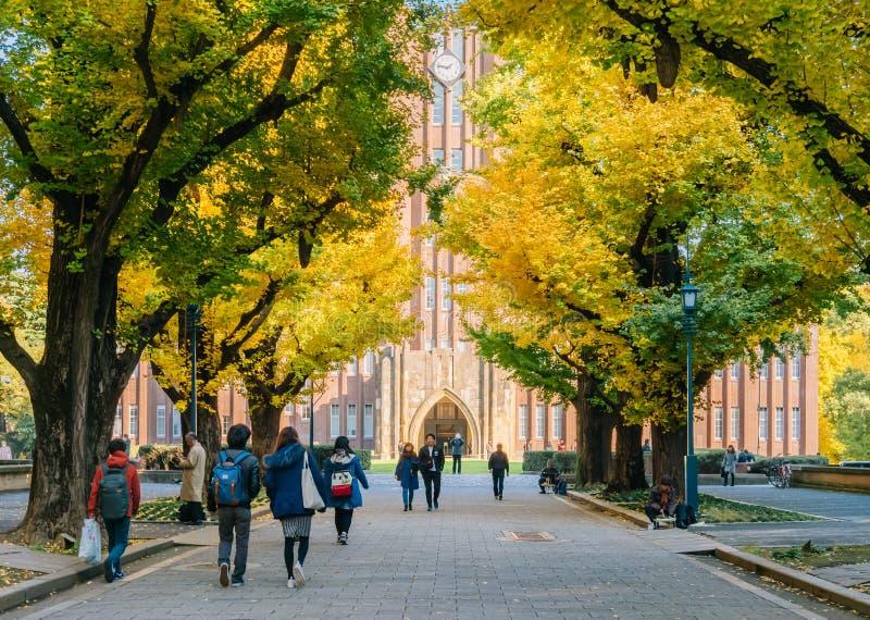 Yasuda audytorium uniwersytet Tokio, Japonia obraz royalty free