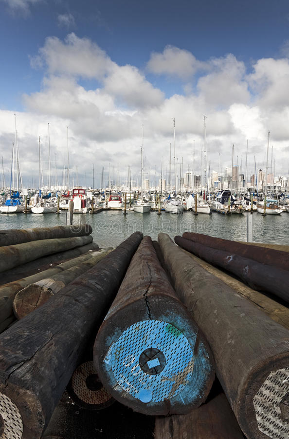 Yates en el puerto deportivo de Westhaven fotografía de archivo libre de regalías