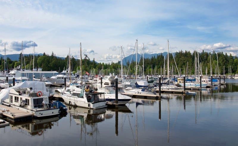 Yates en el puerto deportivo hermoso de la ciudad de Vancouver, Colombia británica Canadá foto de archivo libre de regalías