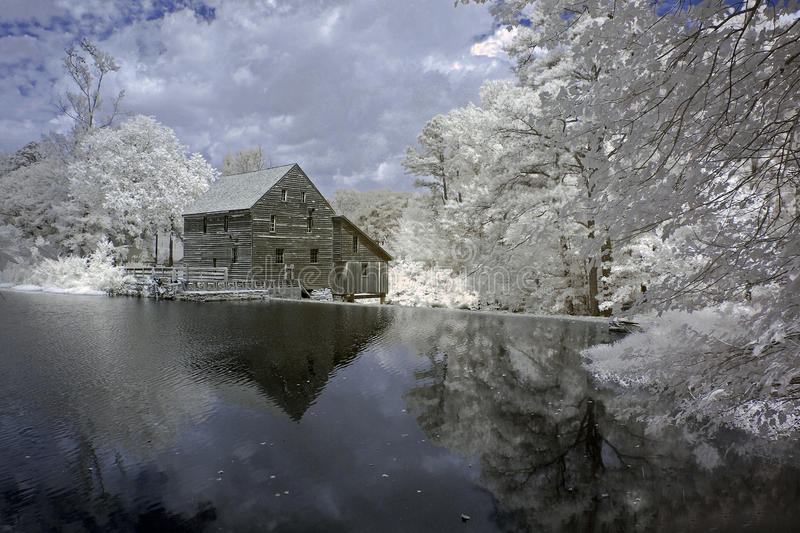 Yates Mill Pond, Infrared royalty free stock photo