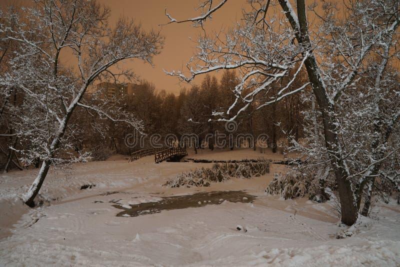 Yauza floodplain park fotografia stock