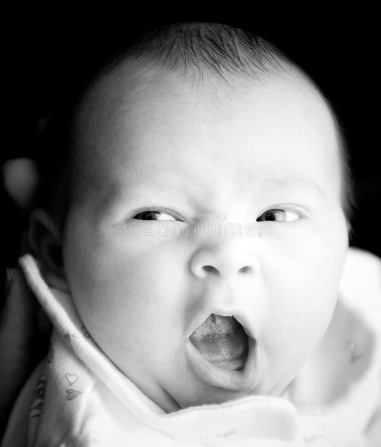 Yawn royalty free stock photo