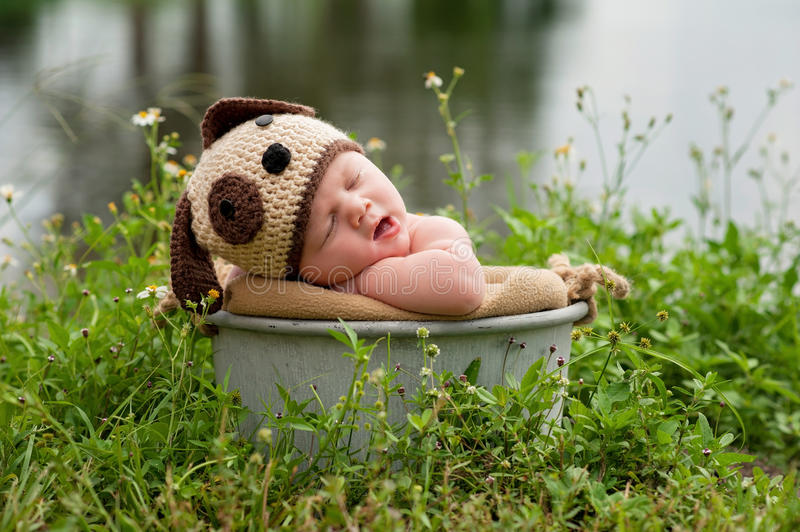 Yawning Baby Boy Wearing a Puppy Dog Costume. A yawning three month old baby boy wearing a crocheted puppy dog hat. He's sleeping in a galvanized steel bucket royalty free stock photography