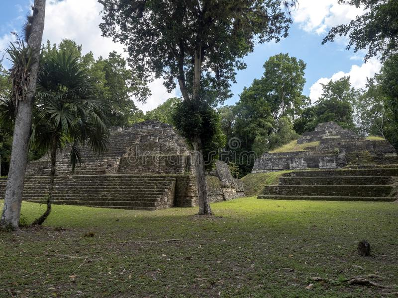 Yaxha Nakum Naranjo nationalpark, Mayan arkeologisk monument, Guatemala arkivfoton