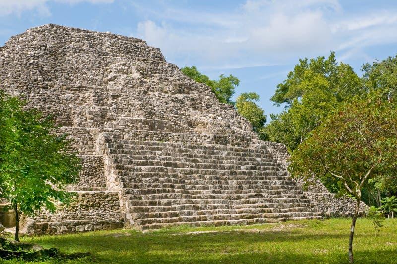 Yaxha - pyramide do maya fotografia de stock royalty free
