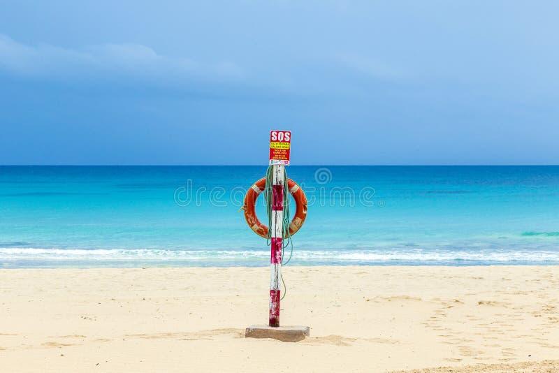 Życie pasek przy plażą w Fuerteventura fotografia stock