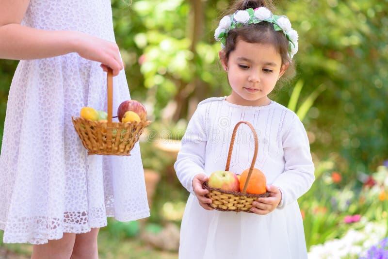 ?ydowski wakacyjny Shavuot HarvestTwo małe dziewczynki w biel sukni trzymają kosz z świeżą owoc w lato ogródzie obrazy stock