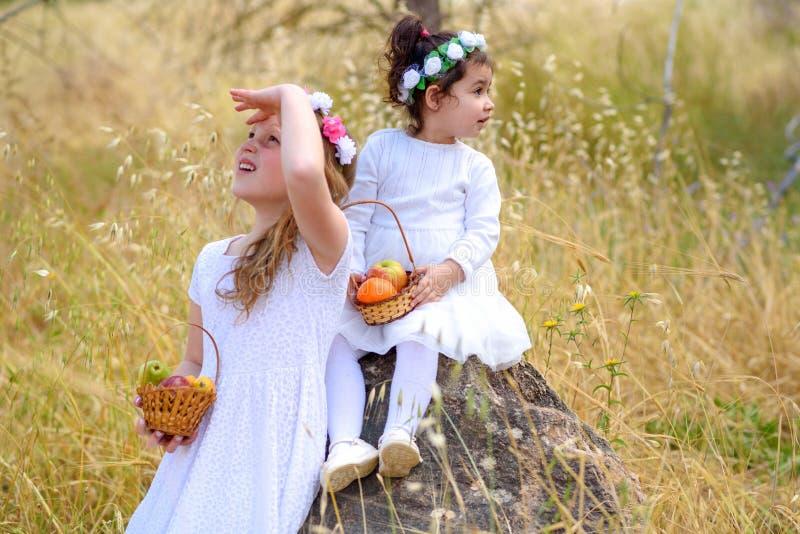 ?ydowski wakacyjny Shavuot HarvestTwo ma?e dziewczynki w biel sukni trzymaj? kosz z ?wie?? owoc w pszenicznym polu zdjęcie stock