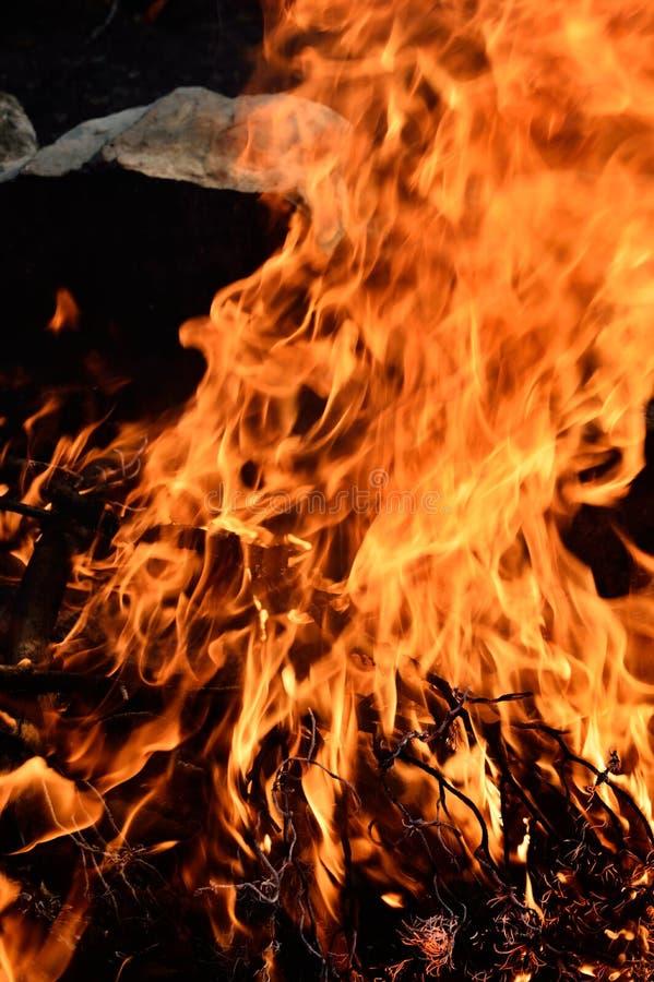 Ye-bränningflamma royaltyfri fotografi